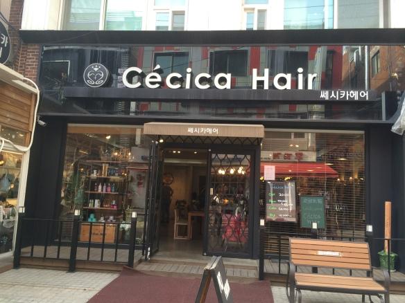 Cecica Hair Salon
